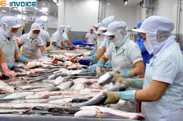 Kinh doanh thủy sản bắt đầu sử dụng hóa đơn điện tử bắt buộc từ 1/11/2020